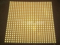 LED天花板灯/LED天花灯 5