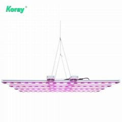 園藝水培商業垂直農場LED植物生長燈