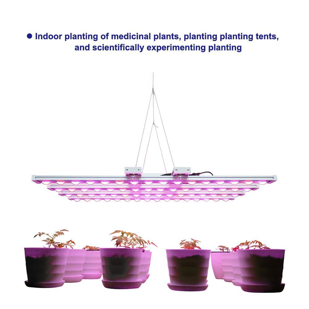 園藝水培商業垂直農場LED植物生長燈 5