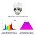 全光谱LED生长植物灯室内水培商用园艺顶光高功率模组阵列灯 6