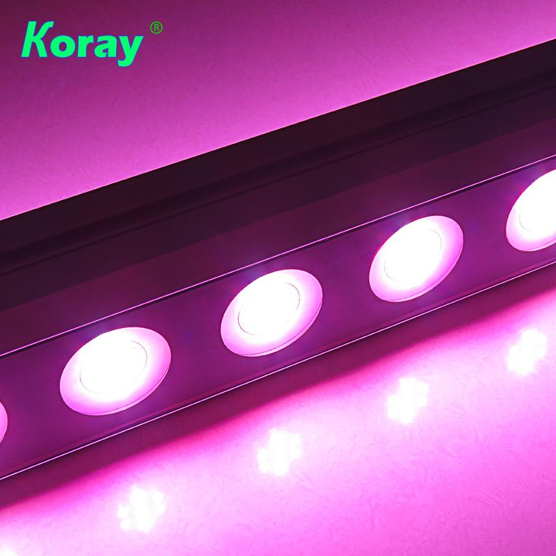 株间照明内置电源低温升植物灯模组大棚植物补光高空间层架种植灯 5
