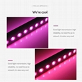 Full spectrum LED Grow Light  for commercial cultivation plants growth 12