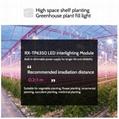 株间照明内置电源低温升植物灯模组大棚植物补光高空间层架种植灯 13
