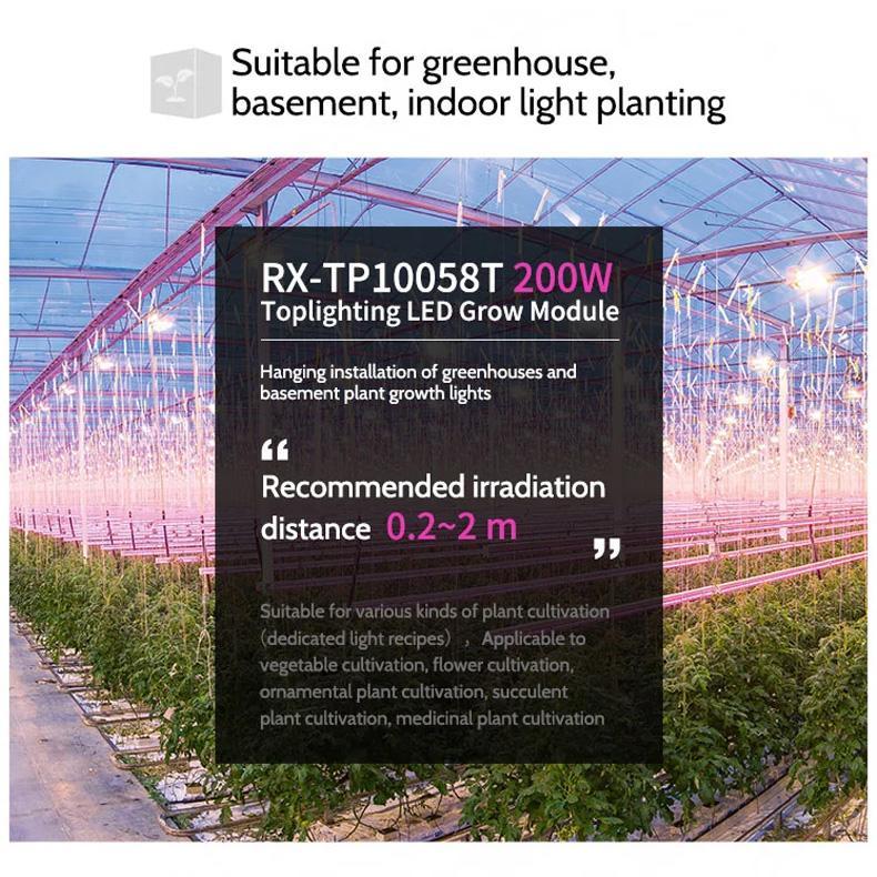 高功率頂光植物燈模組大棚種植地下室吊挂式大棚補光燈防水燈 6
