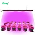 LED Grow Light Bar  Housing waterproof LED Light Bar For Lettuce Growth 3