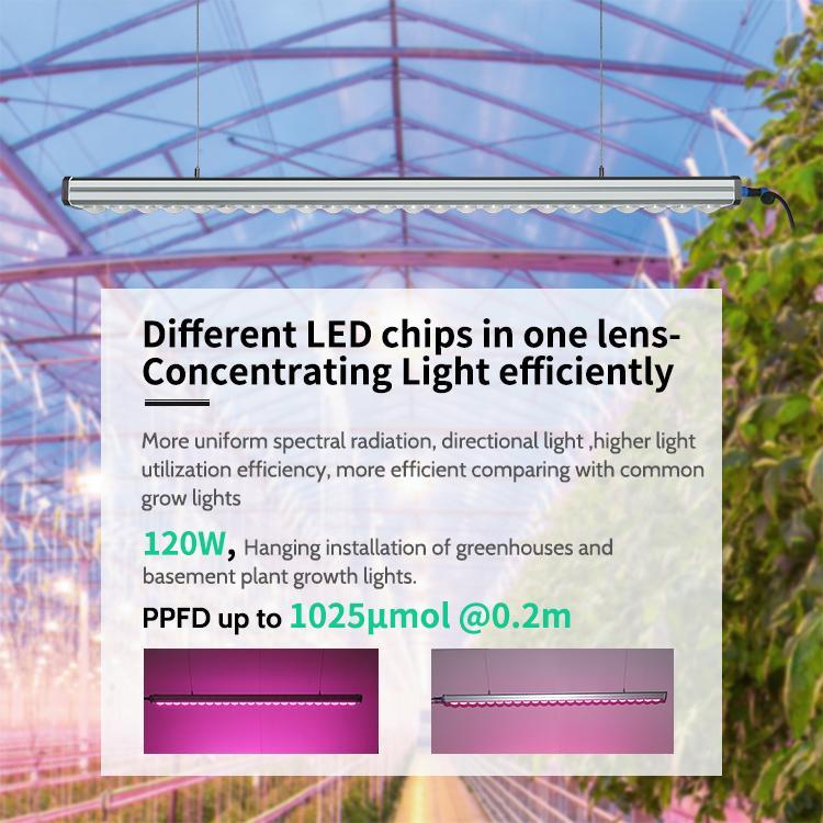 LED Grow Light Bar  Housing waterproof LED Light Bar For Lettuce Growth 7