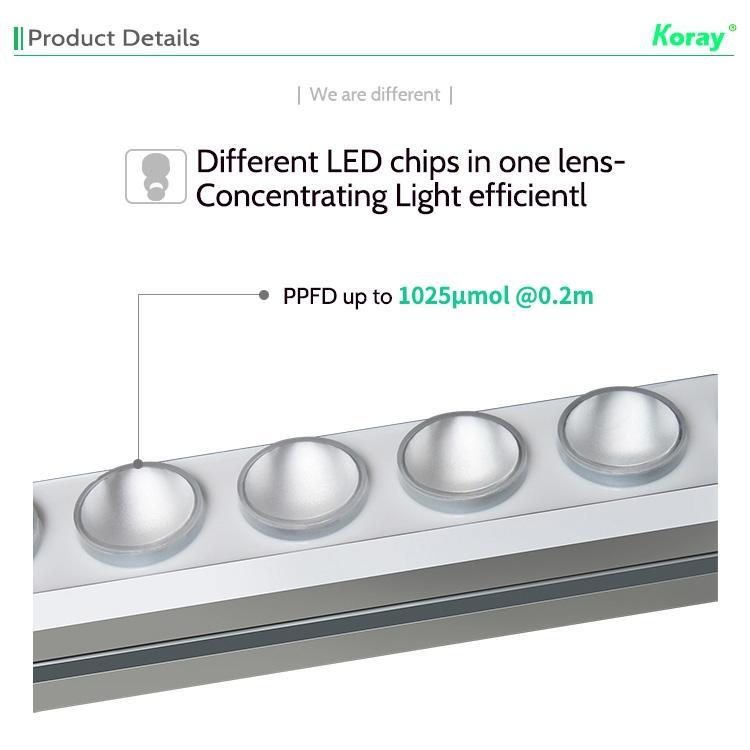 高功率垂直農業植物燈立體種植燈高間距層架結構植物工廠植物燈 8