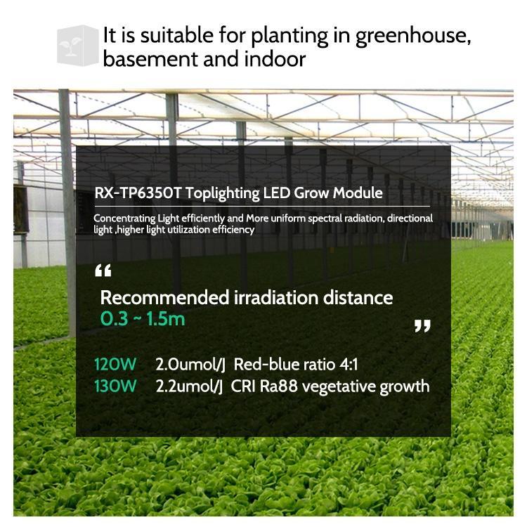 LED Grow Light Bar  Housing waterproof LED Light Bar For Lettuce Growth 14