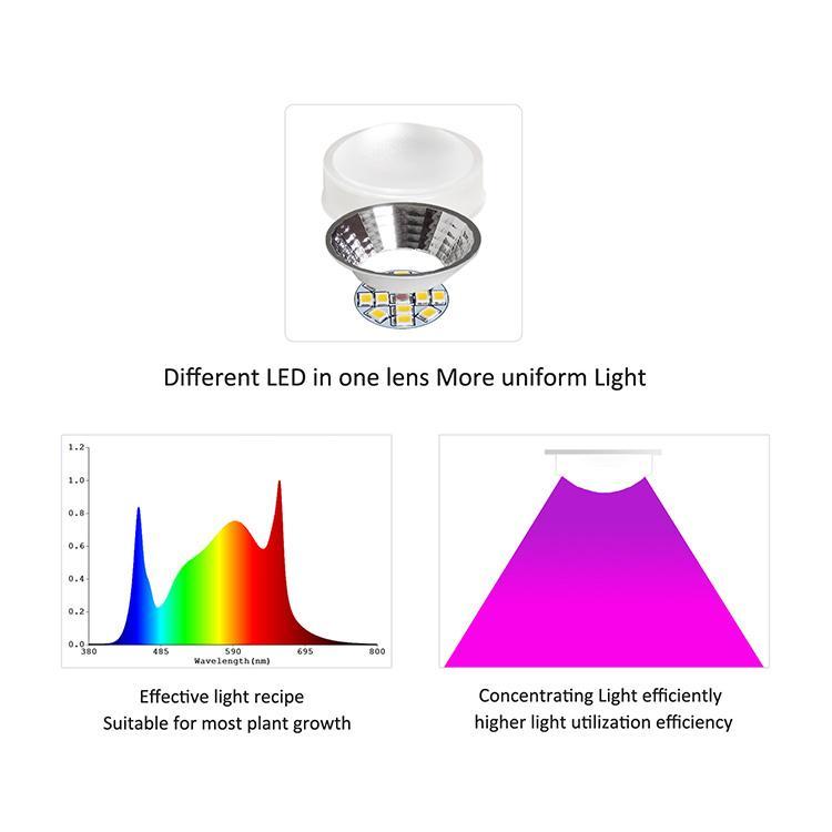 立體種植燈高功率垂直農業植物燈獨特的透鏡結構室內農場 修改 6