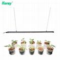 四通道四種不同的光譜單獨控制調光植物燈實驗種植育苗植物工廠 4