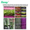四通道四种不同的光谱可单独控制组合植物灯模组植物灯 3
