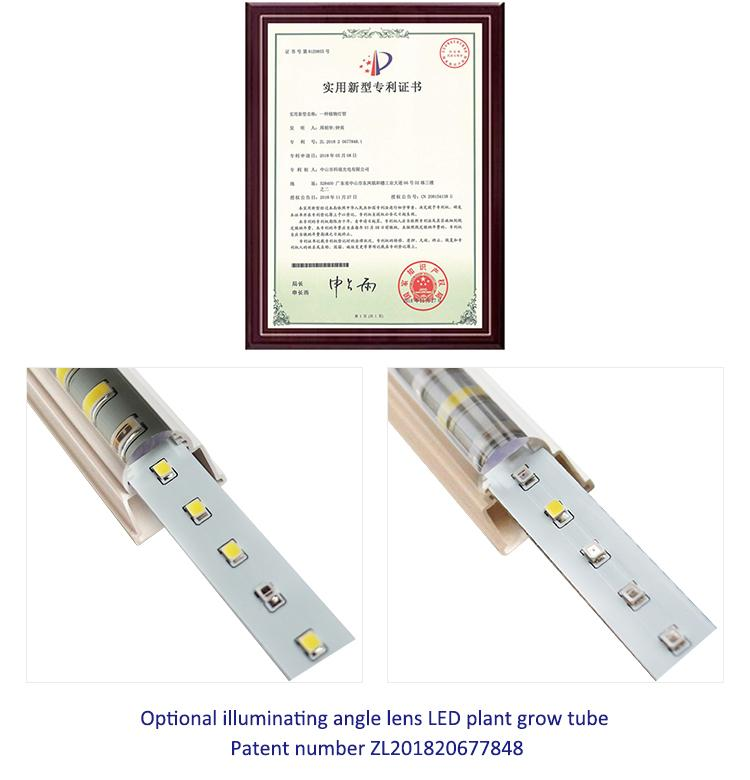 組培育苗植物工廠專用經濟型植物燈管蔬菜營養生長 8