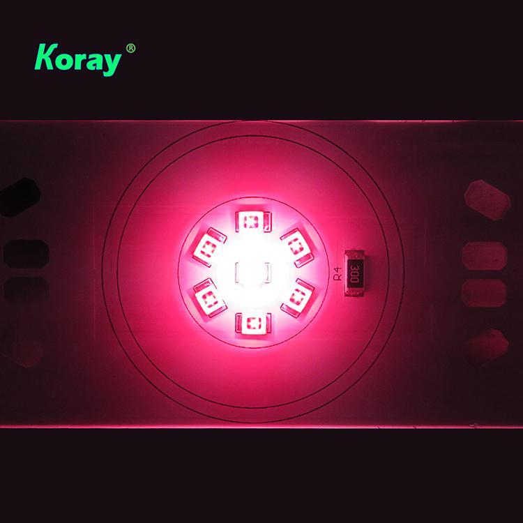 經濟型育苗專用光譜防水植物燈模組層架垂直農業燈 4