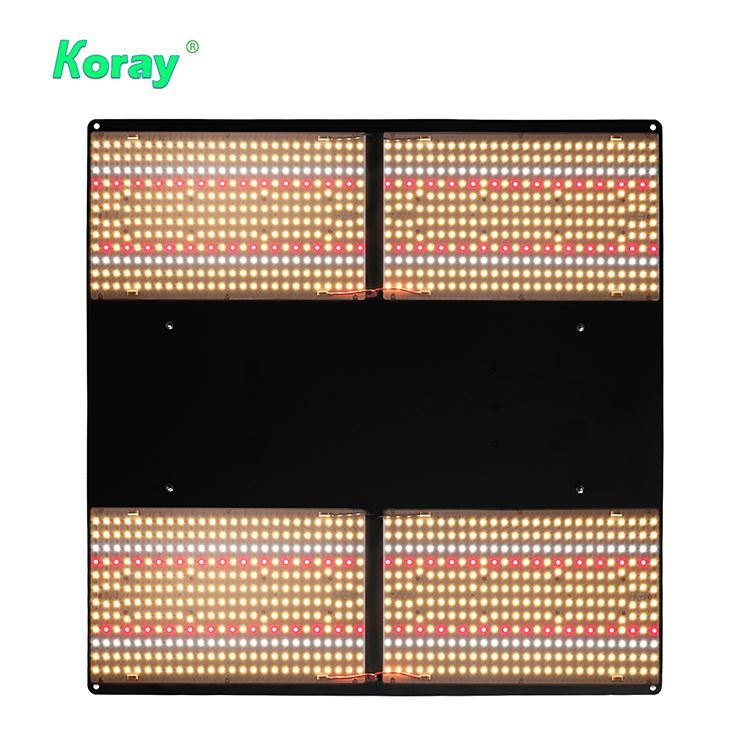 Plant tent and greenhouse medicinal grow light module Samsung LM301 lamp bead  2