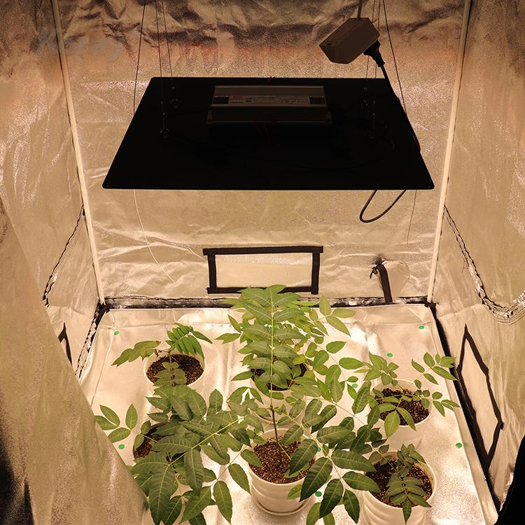 Plant tent and greenhouse medicinal grow light module Samsung LM301 lamp bead  6