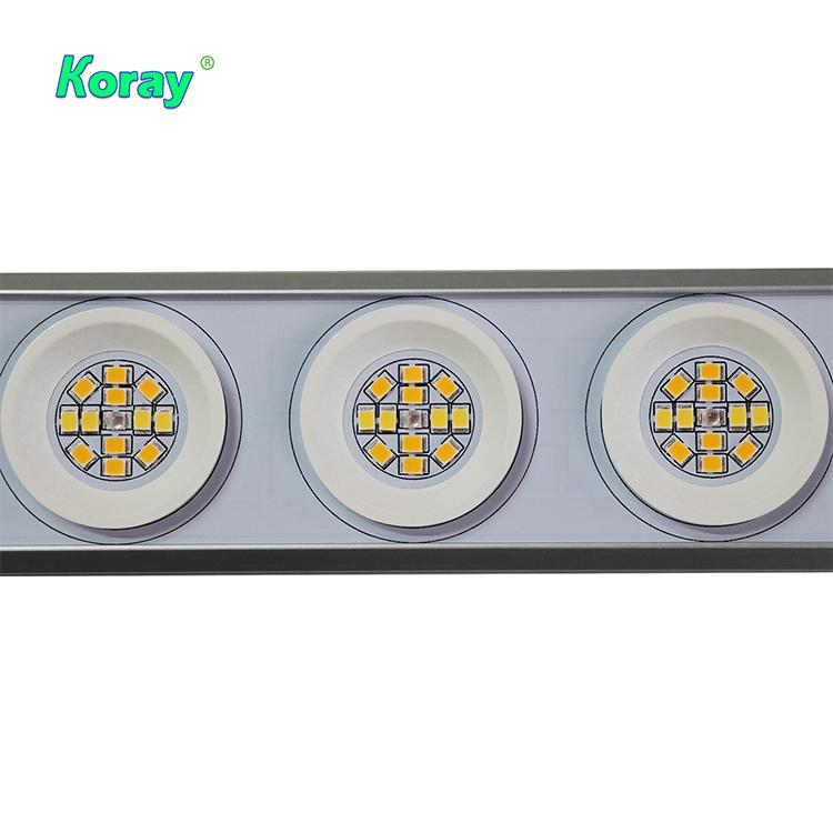 600W低价格经济型顶光药用植物药用植物种植阵列灯 3