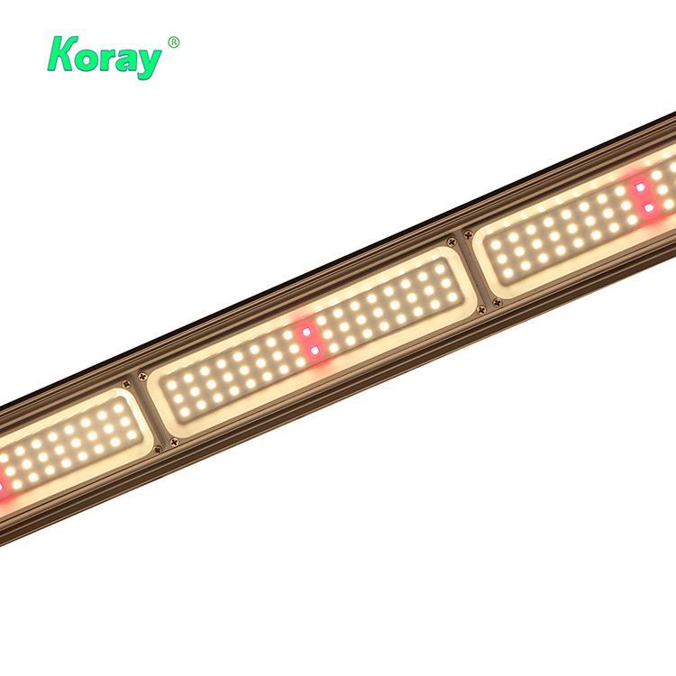 折疊式頂光植物燈專業園藝種植藥用植物燈 3
