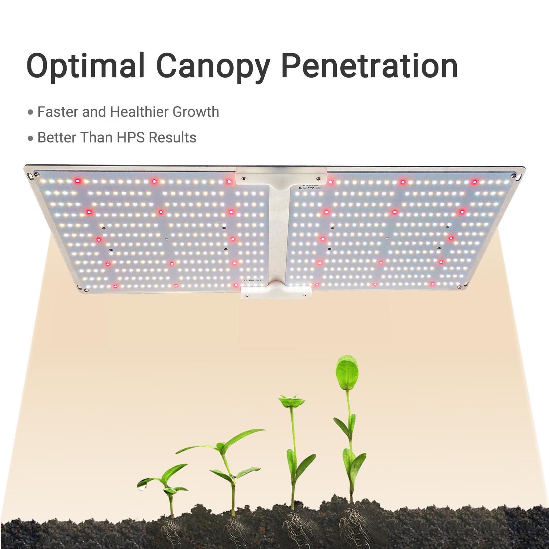 G2000 SF2000 LED量子版植物生長燈 6