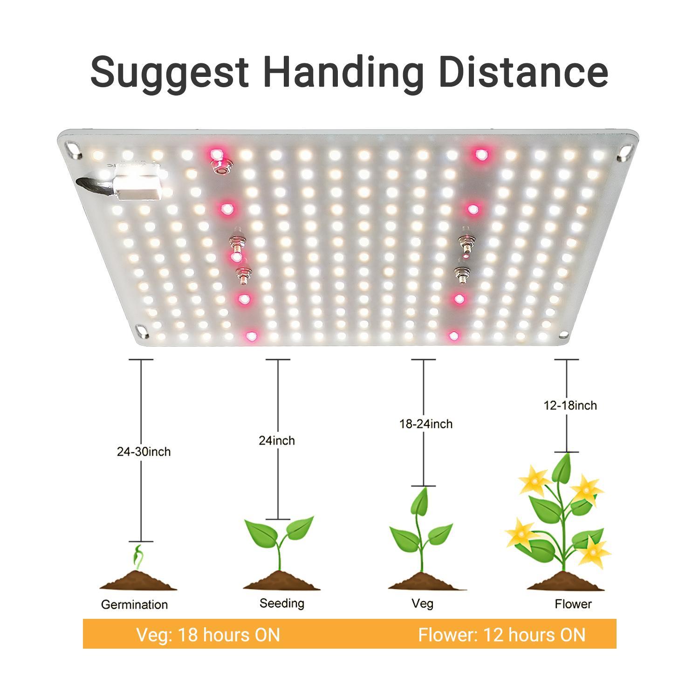 G1000 Led Grow Light 量子版植物灯 2