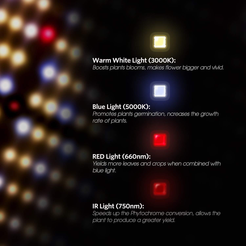 G1000 Led Grow Light 量子版植物灯 5