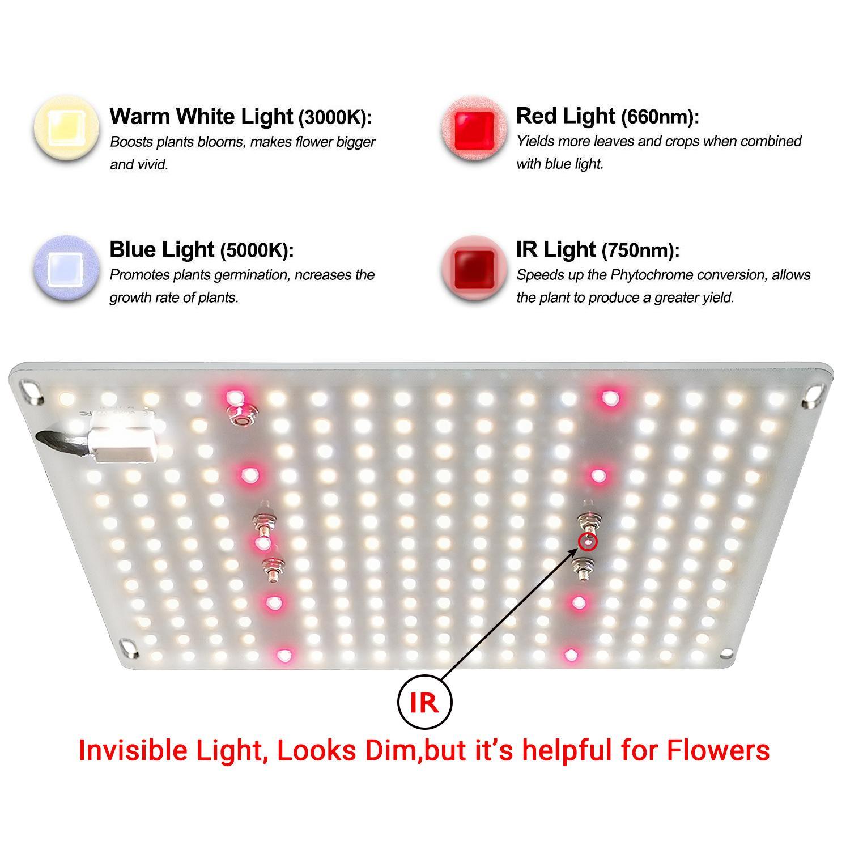 G1000 Led Grow Light 量子版植物燈 6