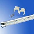 DC 12V input showcase led tube light