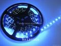 12V 24V LED軟燈帶 5米/卷 2