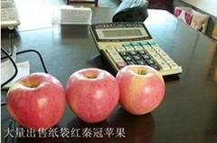 礼泉县渭北葡萄专业合作社