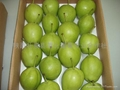 shannxi's early su pear