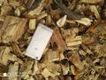 纯苹果木木片,果木木片, 杨木片,杂木片 3