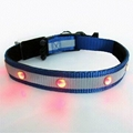 Pet LED collar,pet supplies