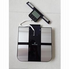 bodecoder human body composition analyzer beauty machine