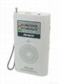 AM/FM Radio Card Reader Player