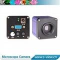 Color VGA output C Mount CMOS industrial