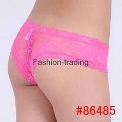 sexy lace pantie sheer lace lady hipster sexy lady short brief lace knickers