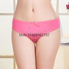 laced cotton bikini bri