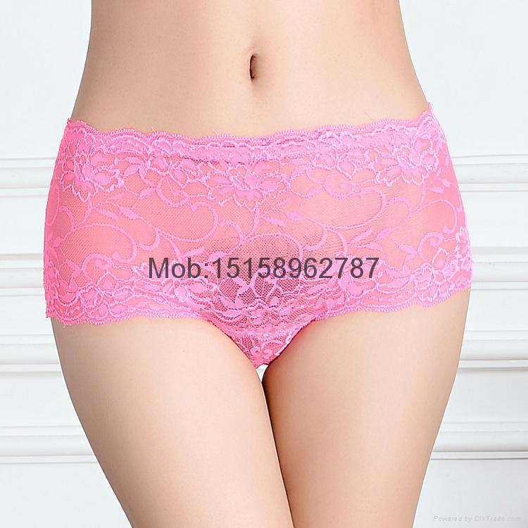 2015 New lace hipster plus size lace brief pants women boyshort sexy panties