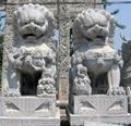 山东石雕狮子,石狮子 2
