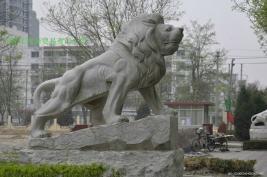 曲陽雕刻門口大理石獅子 5