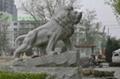 曲阳雕刻门口大理石狮子 5