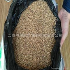 新采收藜麥種子