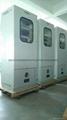 電石淨化尾氣在線監測分析系統