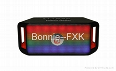 CH-300--Portable Wireless Bluetooth Speaker with LED light/USB/TF/FM Radio