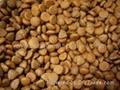 Dog food production line/dog feed