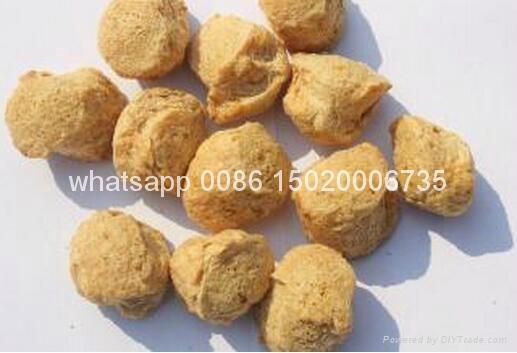 textured soybean protein extruder machine 2