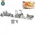 Single screw frying food processing line