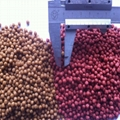 one ton per hour Fish food pellet machine