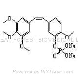 Combretastatin A4 disodium phosphate