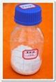 Capsaicin 404-86-4