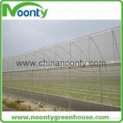 Farm Multi-spans greenho